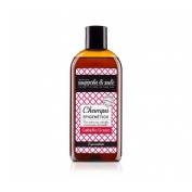 Nuggela & sule champu epigenetico cabello graso (250 ml)