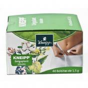 KNEIPP DELGAPLANT INFU 40 BOLS